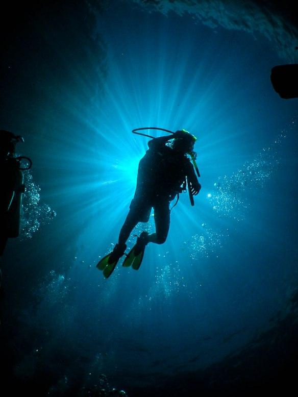 indigo-blue-silhouettes-underwater-1